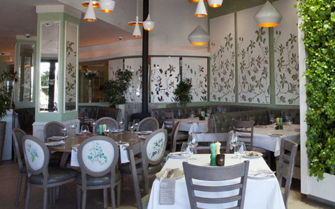 The Best Italian Restaurants Around Sandton